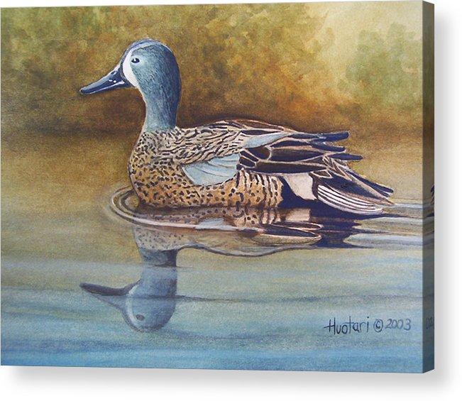 Rick Huotari Acrylic Print featuring the painting Blue Winged Teal by Rick Huotari
