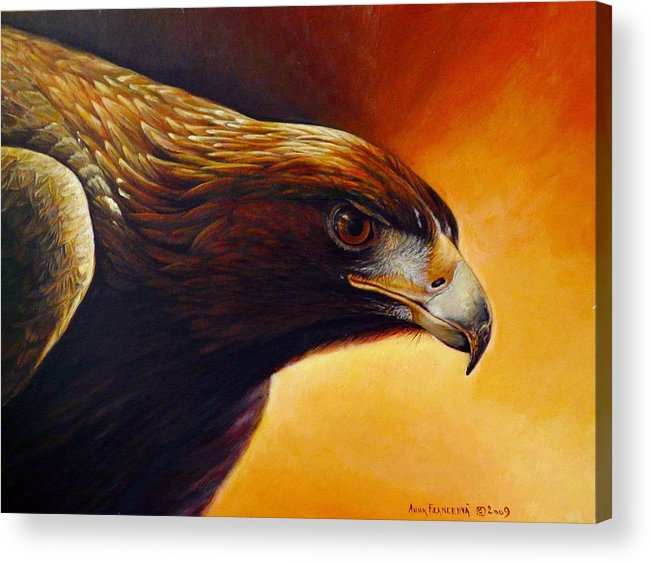 Falconry Acrylic Print featuring the painting Concentration by Anna Franceova