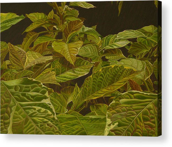 Plant Acrylic Print featuring the painting Ready for Spring by Thu Nguyen