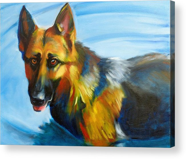 German Shepherd Acrylic Print featuring the painting She Loves the Water by Kaytee Esser