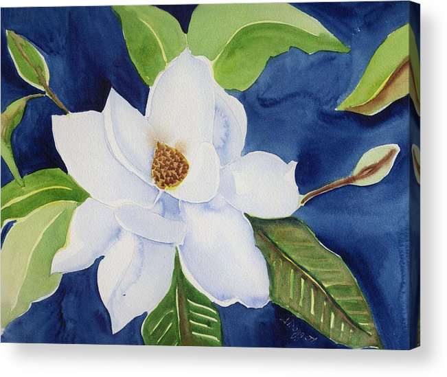 Magnolia Acrylic Print featuring the painting Magnolia by Janet Doggett