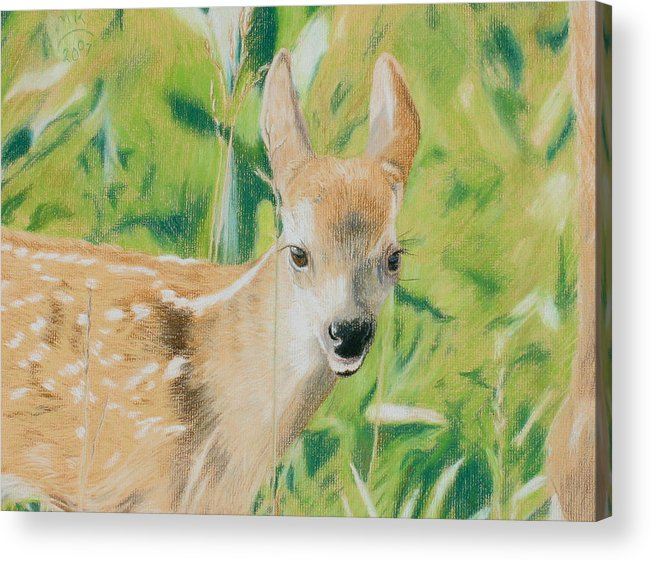 Fawn Acrylic Print featuring the painting Alert Fawn by Miriam A Kilmer