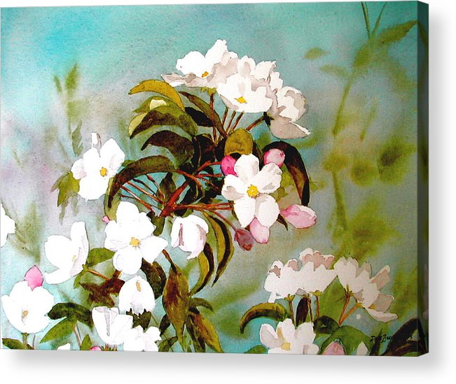 Blossoms Acrylic Print featuring the painting Apple Blossoms by Faye Ziegler