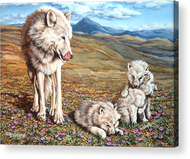 Arctic Wolf Acrylic Print featuring the painting Arctic Summer by Richard De Wolfe