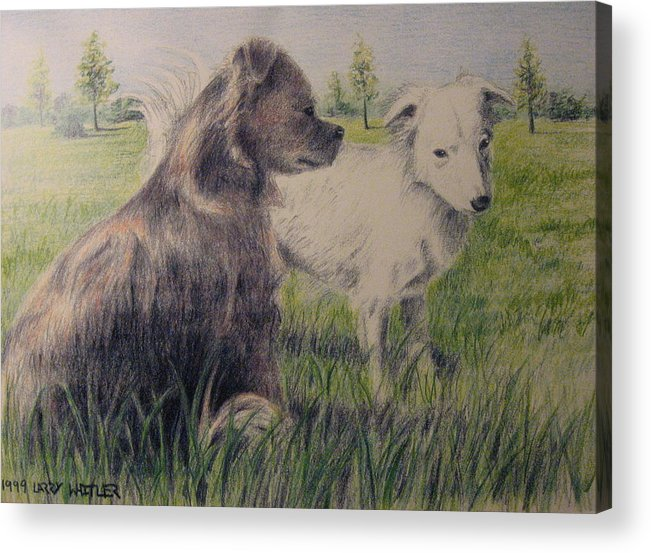 Dogs Acrylic Print featuring the drawing Dogs In A Field by Larry Whitler
