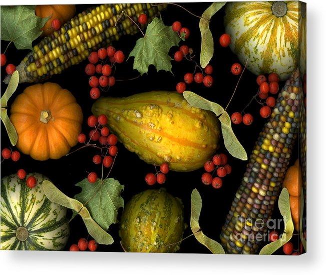 Slanec Acrylic Print featuring the photograph Fall Harvest by Christian Slanec
