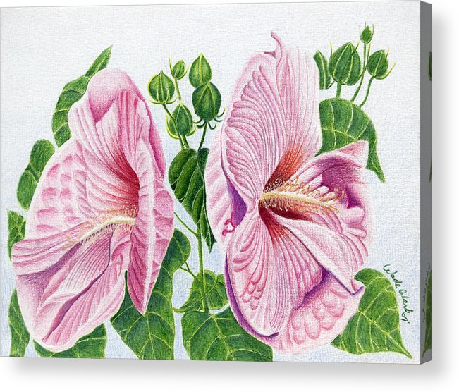 Floral Acrylic Print featuring the drawing Grandma by Wade Clark