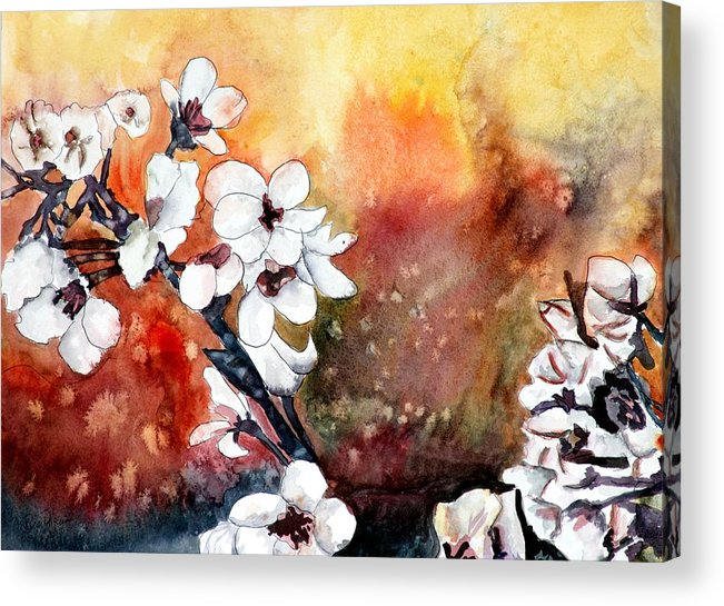 Watercolor Acrylic Print featuring the painting Japanese cherry blossom abstract flowers by Derek Mccrea
