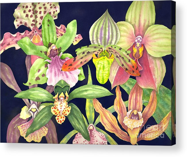 Orchids Acrylic Print featuring the painting Orchids by Lucy Arnold