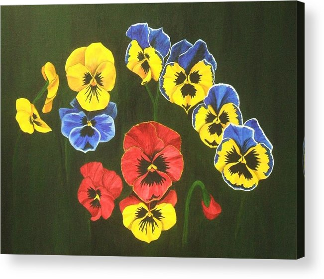 Pansy Flowers Acrylic Print featuring the painting Pansy Lions Too by Brandy House