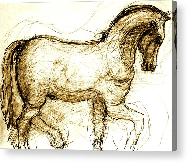 Horse Acrylic Print featuring the drawing Set the Stallion Free by Dan Earle