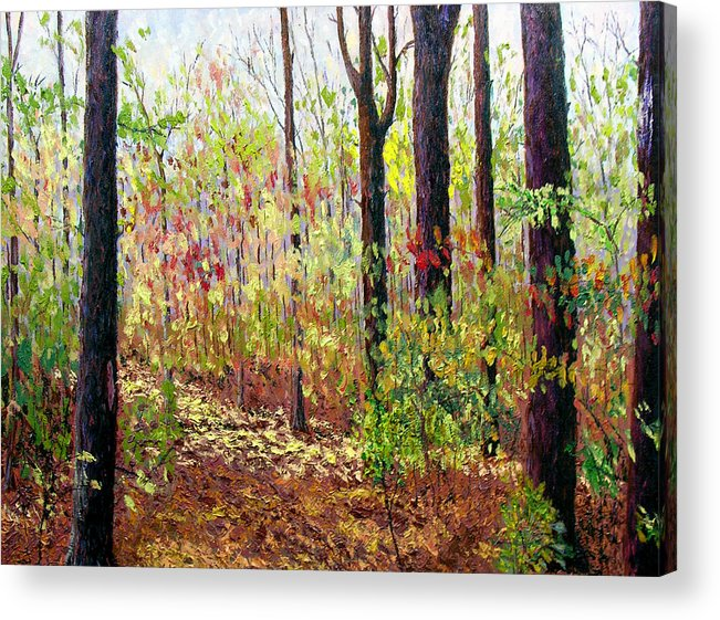 Original Oil On Canvas Acrylic Print featuring the painting Sewp 7-05 by Stan Hamilton