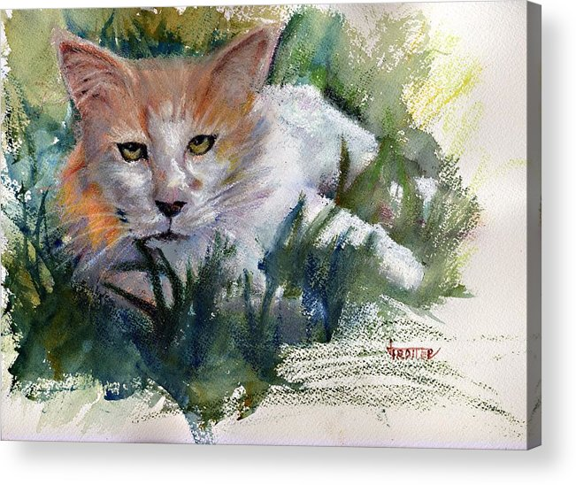 Art Acrylic Print featuring the painting The Community Cat by Jimmie Trotter