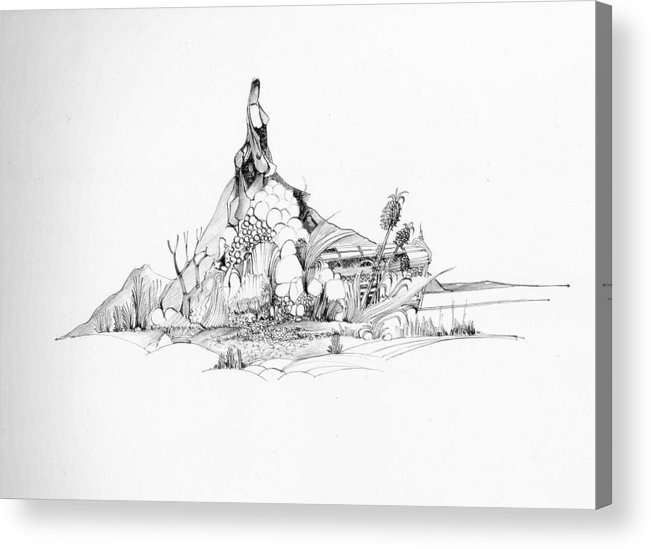 Nature Acrylic Print featuring the drawing Treasure and the rock by Padamvir Singh