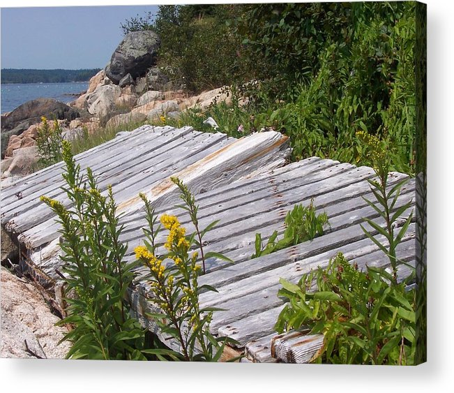 Nature Acrylic Print featuring the photograph Washed ashore by Lisa Kane