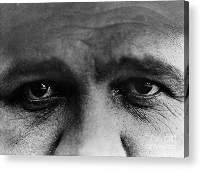 People Acrylic Print featuring the photograph Babe Ruth Eyes by Transcendental Graphics