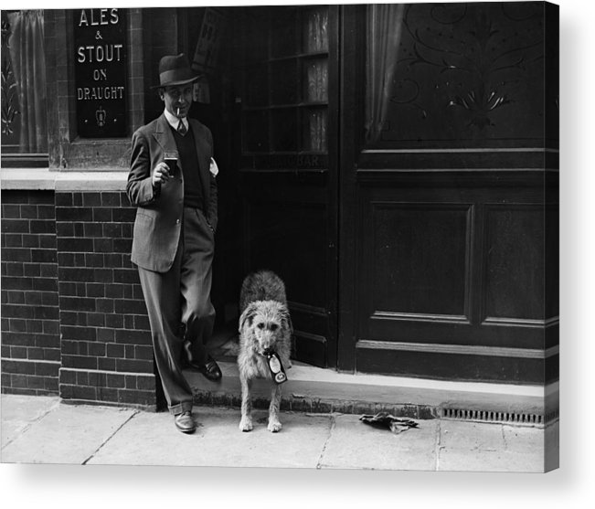 Pets Acrylic Print featuring the photograph Beer Loving Dog by Fox Photos