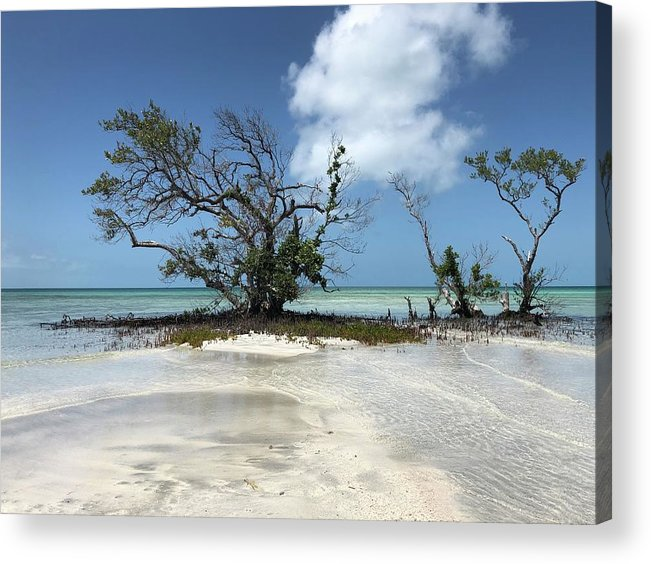 Key West Florida Waters Acrylic Print featuring the photograph Key West Waters by Ashley Turner