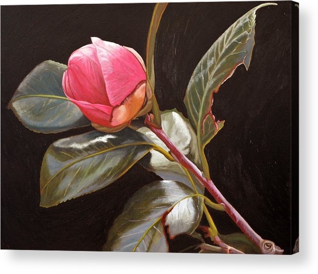 Rose Acrylic Print featuring the painting November Rose by Thu Nguyen