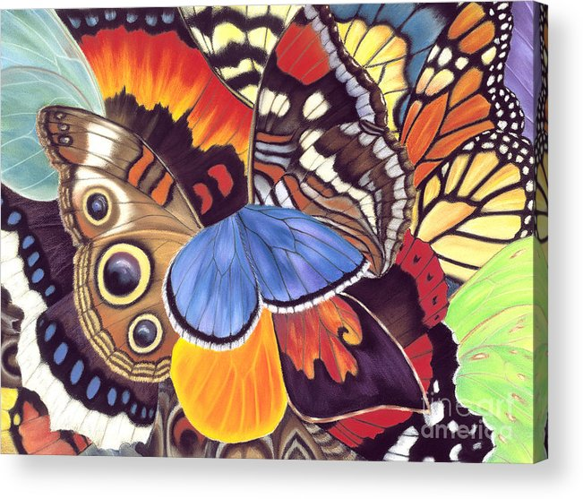 Butterflies Acrylic Print featuring the painting Wings Of California by Lucy Arnold