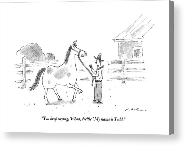 Horses Acrylic Print featuring the drawing A Horse Speaks To A Cowboy Trying To Calm by Michael Maslin