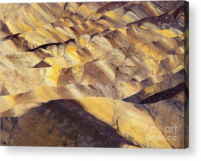 Zabriskie Point Acrylic Print featuring the photograph Desert Undulations by Mike Dawson