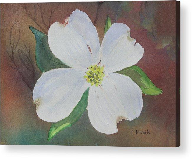 Dogwood Acrylic Print featuring the painting Dogwood Blossom by Patricia Novack