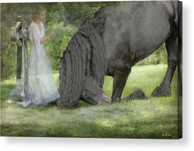 Horses Acrylic Print featuring the photograph I Miss You by Fran J Scott