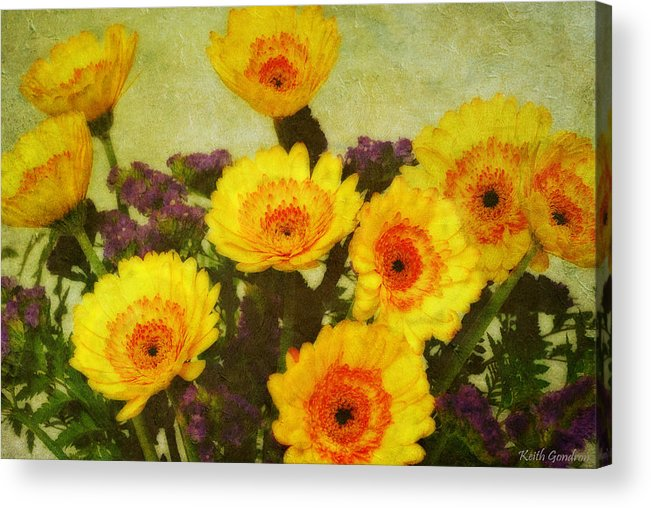 Bouquet Acrylic Print featuring the photograph Lots of Daisies by Keith Gondron