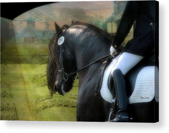 Friesian Horses Acrylic Print featuring the digital art Musical Freestyle by Fran J Scott