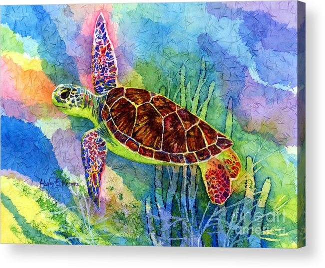 Turtle Acrylic Print featuring the painting Sea Turtle by Hailey E Herrera