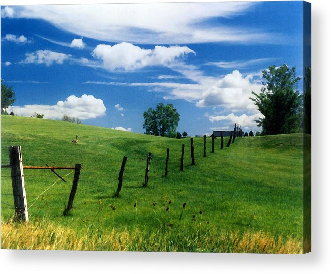 Summer Landscape Acrylic Print featuring the photograph Summer Landscape by Steve Karol