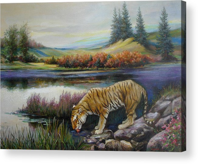 Siberian Tiger Acrylic Print featuring the painting Tiger by the river by Svitozar Nenyuk