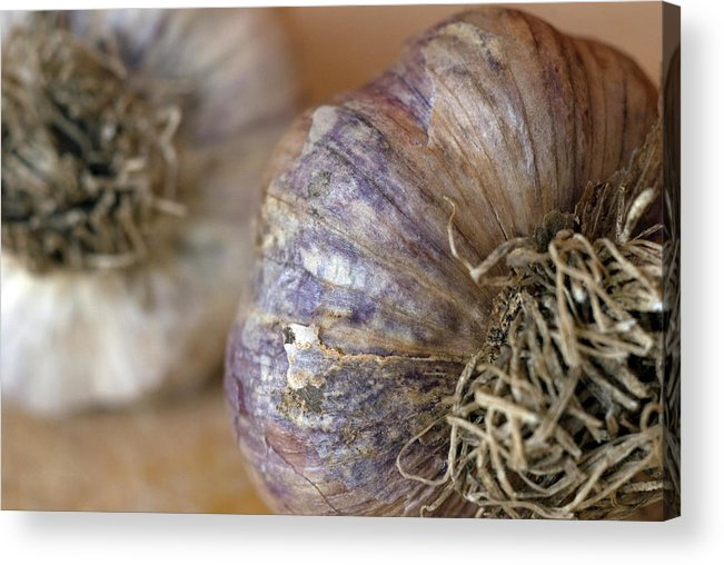 Garlic Acrylic Print featuring the photograph Two Garlic Heads, Close-up by Rebecca E Marvil