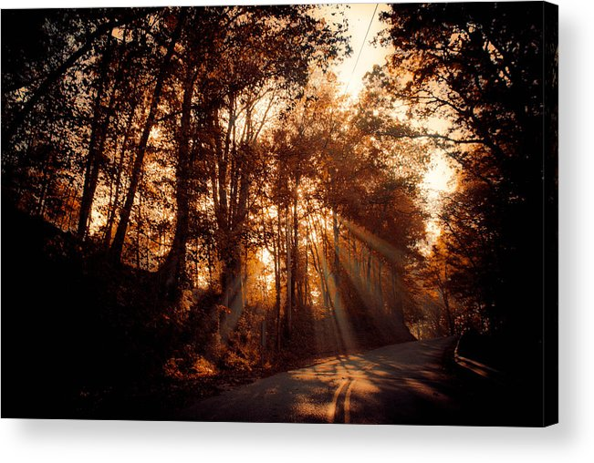 Ray Acrylic Print featuring the photograph A New Dawn by Trish Tritz