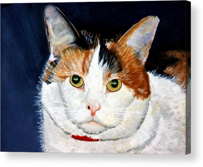 Cat Acrylic Print featuring the painting Buttons by Stan Hamilton