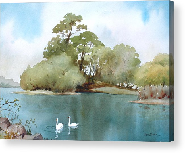 Swans Acrylic Print featuring the painting Swan Lake by Faye Ziegler
