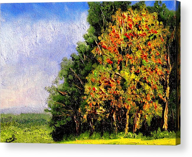 Plein Air Acrylic Print featuring the painting Bc11 by Stan Hamilton