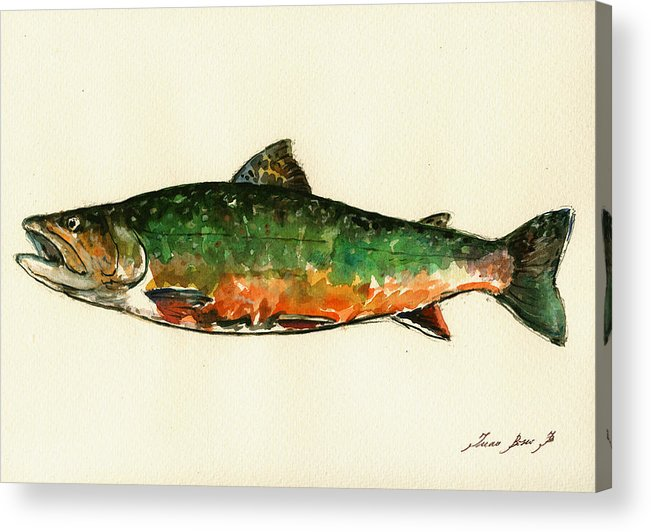 Brook Trout Acrylic Print featuring the painting Brook trout by Juan Bosco