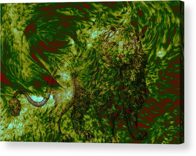 Forest Acrylic Print featuring the photograph Can you see me by Evelyn Patrick