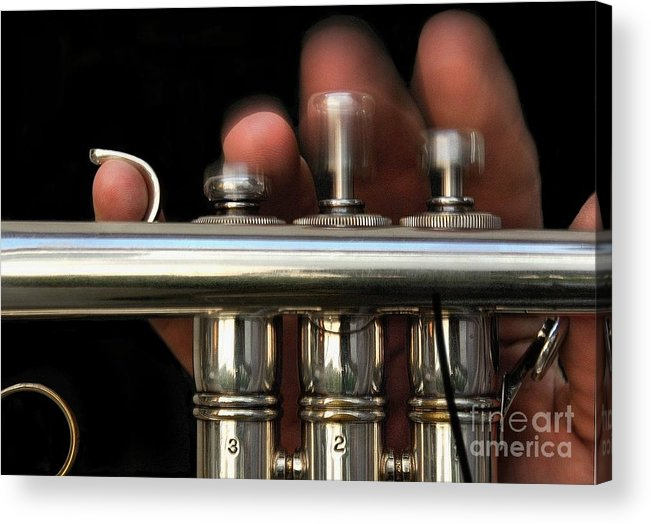 Trumpet Acrylic Print featuring the photograph Flight Of The Bumblebee by Dan Holm