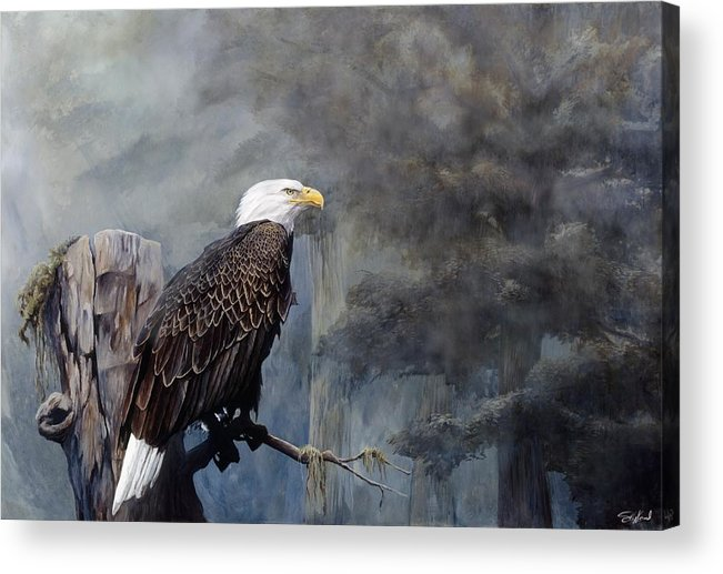 Eagle Art Acrylic Print featuring the painting Freedom Haze by Steve Goad