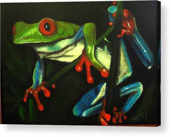 Red Eyed Tree Frog Acrylic Print featuring the painting Hangin Out by Darlene Green