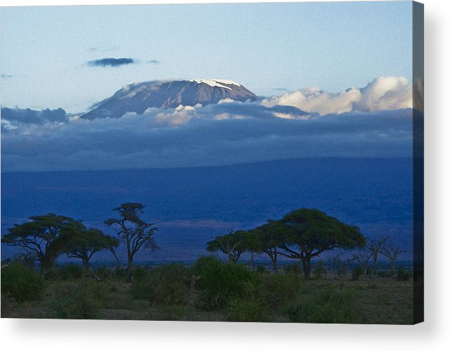 Africa Acrylic Print featuring the photograph Magnificent Kilimanjaro by Michele Burgess