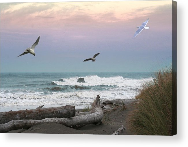 Ocean Shores Acrylic Print featuring the photograph Ocean Shores O1074 by Mary Gaines