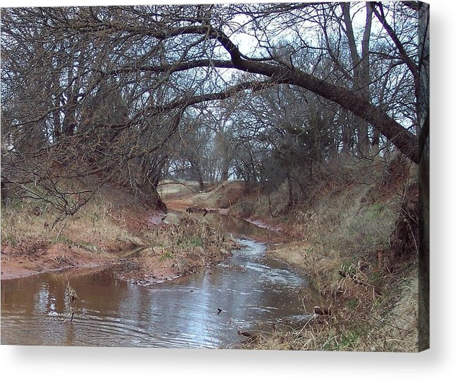 Landscapes Acrylic Print featuring the photograph Rivers Bend by Shari Chavira