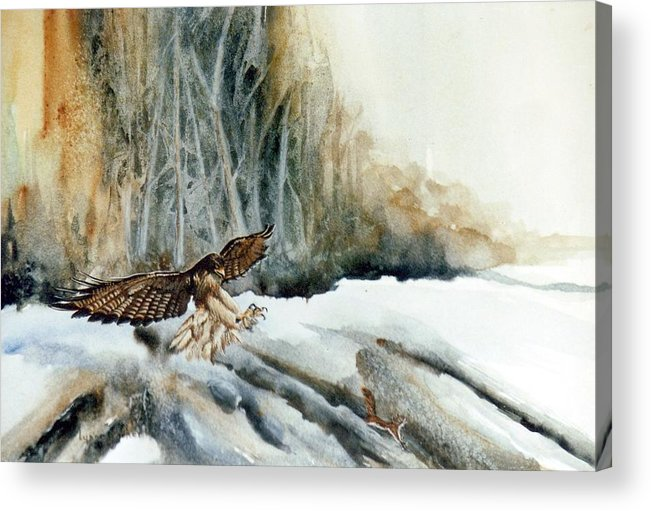 Redtail Hawk & Squirrel Acrylic Print featuring the painting Supper Maybe by Lynne Parker