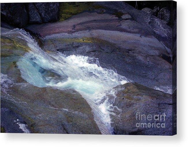 Flowing Acrylic Print featuring the photograph Tropical Water Bird Josephine Falls by Kerryn Madsen- Pietsch