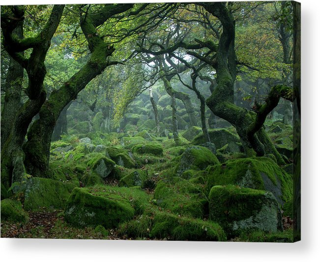 Tranquility Acrylic Print featuring the photograph Padley Gorge by Duncan Fawkes