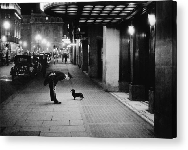 Piccadilly Circus Acrylic Print featuring the photograph Commissionaires Dog by Kurt Hutton
